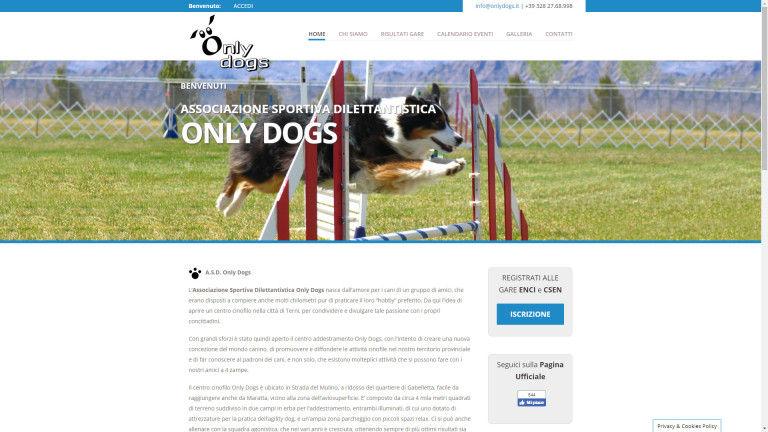 onlydogs